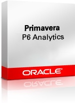 Primavera P6 Analytics