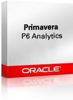 Primavera P6 Analytics